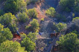 horseback-riding-bishops-lodge-pic1